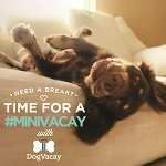 #MiniVacay with DogVacay – All of Me Tour Fun!