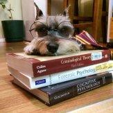 I'm smart too!