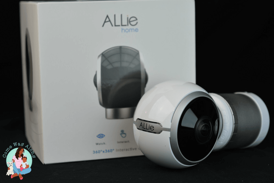 Never Miss a Moment with the ALLie 360 Camera + Giveaway - ComeWagAlong.com