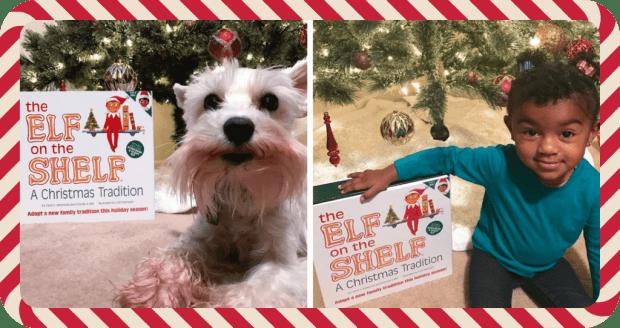 New Family Christmas Tradition + Vlogmas!