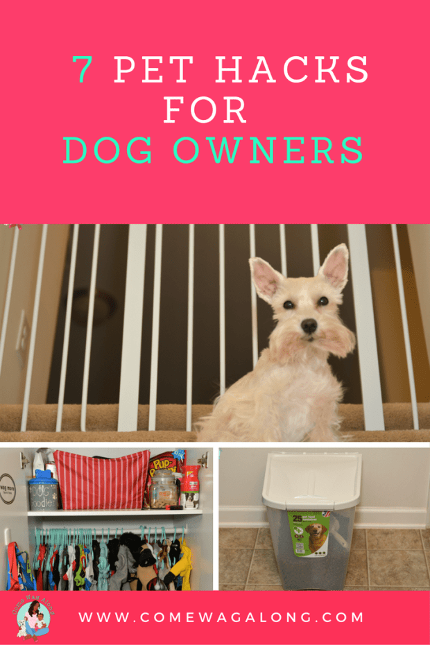 7 Pet Hacks for Dog Owners - ComeWagAlong.com