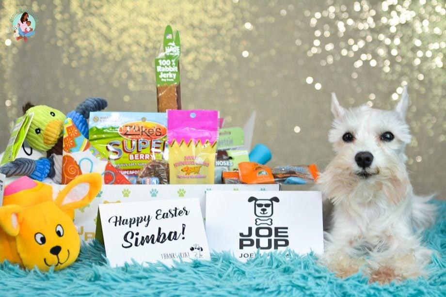 Surprise your Dog with Joe Pup + Unboxing & Coupon Code - ComeWagAlong.com