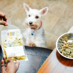 Get Fresh Dog Food Delivered to Your Door with NomNomNow