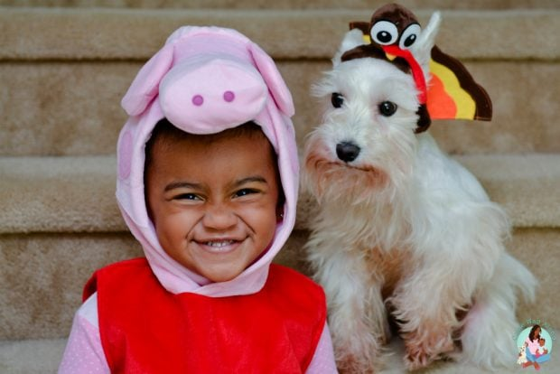 Peppa Pig Costume Turkey Dog Costume