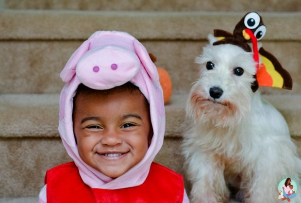 Peppa Pig and Turkey Costume