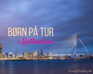 Efterår i Rotterdam med børn | ferie | Erasmus broen