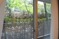 My window/ground floor blacony