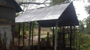Rohingya50317