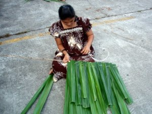 Ethnobotany of Micronesia: A course panion