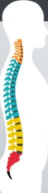 サーフィン 腰痛 腰のアーチ
