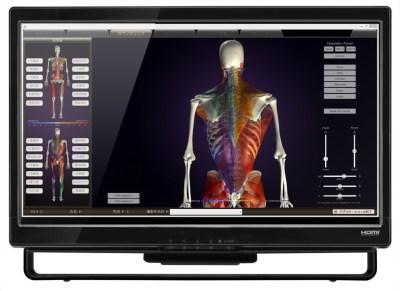 藤沢 パーソナルトレーニングジム くびれ専門 Body Balance Studio COMFY(コンフィ) 姿勢(筋肉バランス)分析
