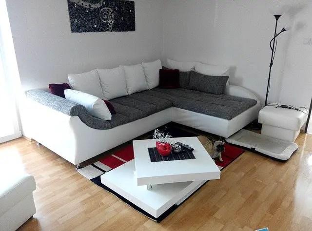 dog sitting next to a sofa