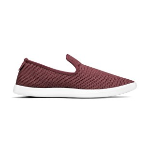 Allbirds Women's Tree Lounger