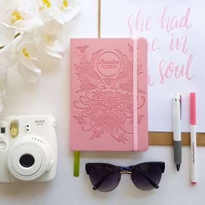 2017 Planner Diary Dated Compact Classic Birds and Bees Blush 3.jpg