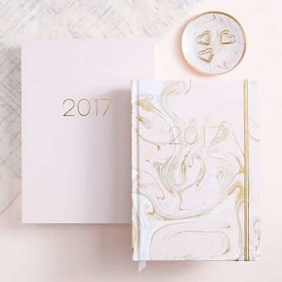 2017-planner-diary-luxe-page-a-day-paper-source