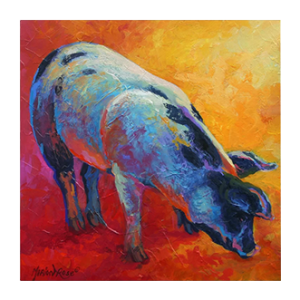 Trademark Fine Art Pig Print on Wrapped Canvas