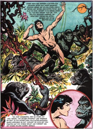 Tarzan – F. A. Z. – Klassiker der Comic-Literatur 8
