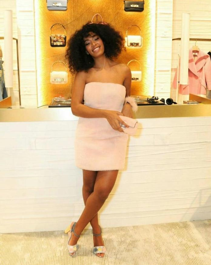 Solange Knowles sexy (2)