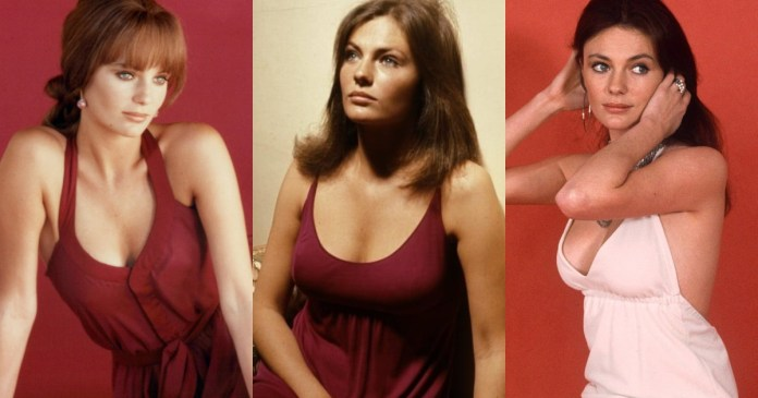 41 Hot & Sexy Pictures Of Jacqueline Bisset