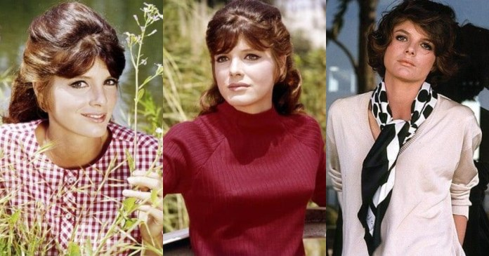 41 Hot & Sexy Pictures Of Katharine Ross