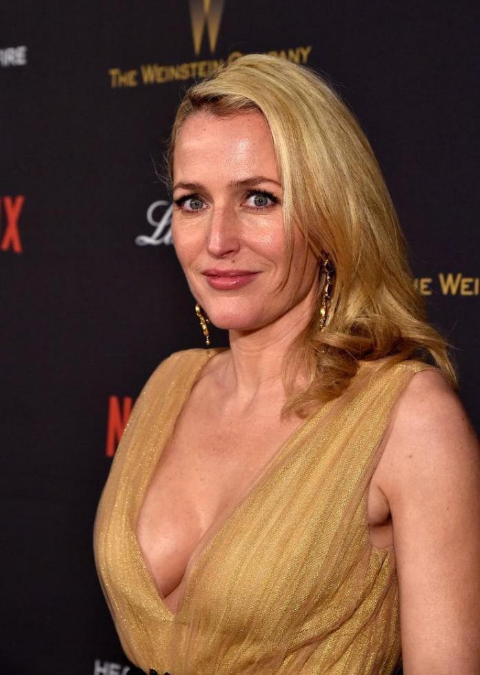 Gillian Anderson sexy look
