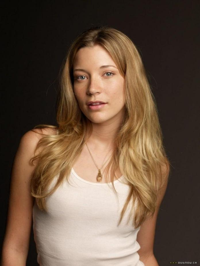 Sarah Roemer sexy pic