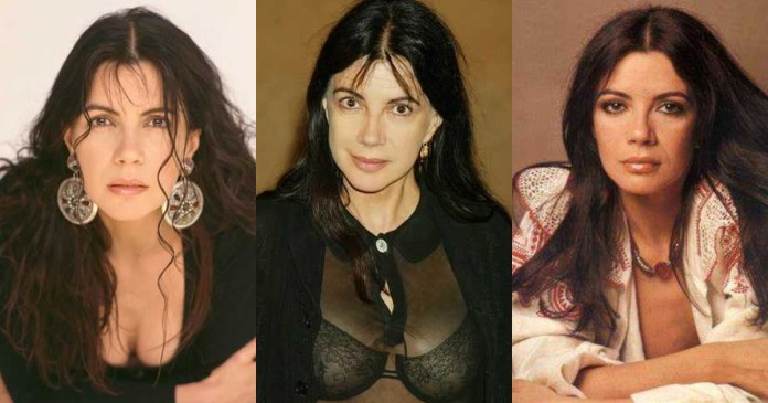 41 Sexiest Pictures Of Carole Laure