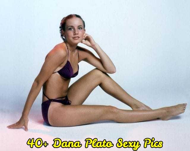 Dana Plato Sexy Pics