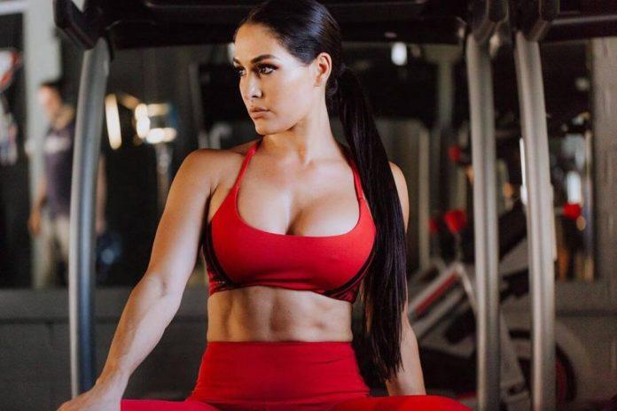 Nikki Bella big busty pics