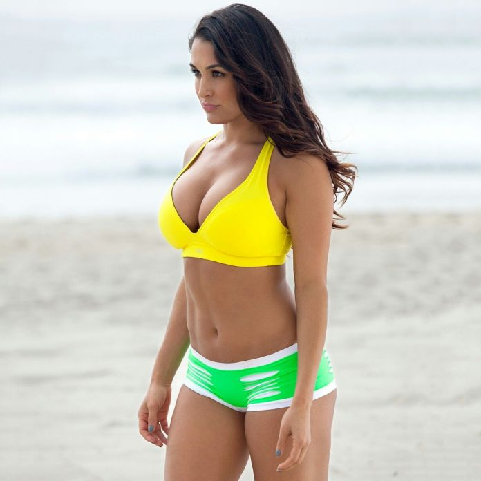 Nikki Bella sexy lingerie pics