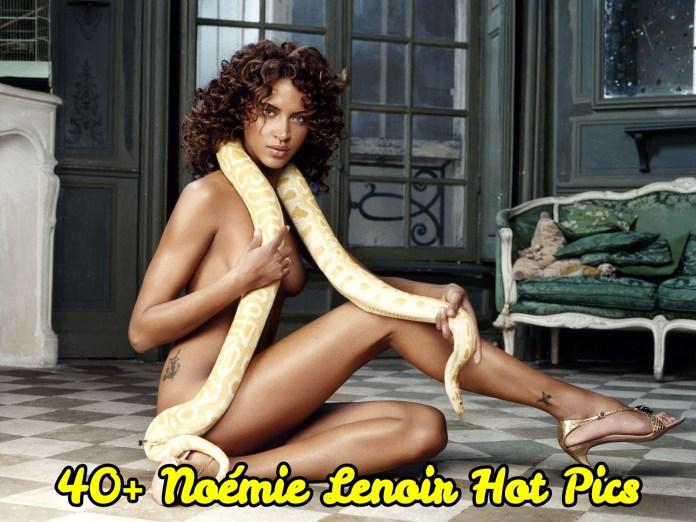 Noémie Lenoir Hot Pics