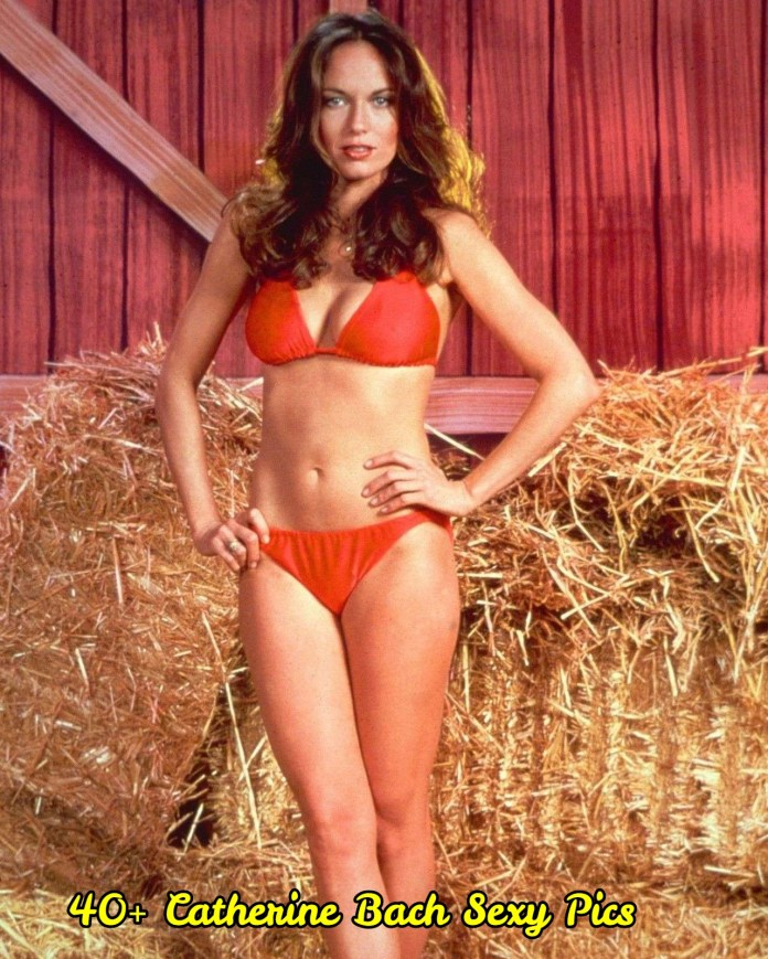 Catherine Bach sexy pictures