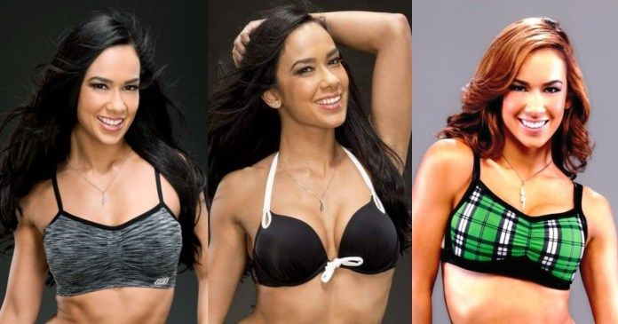 41 Hottest Pictures Of AJ Lee