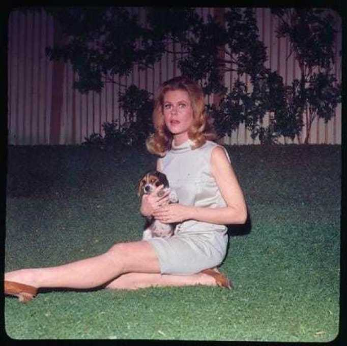 Elizabeth Montgomery feet
