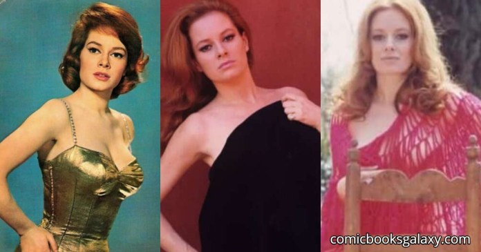 41 Hottest Pictures Of Luciana Paluzzi