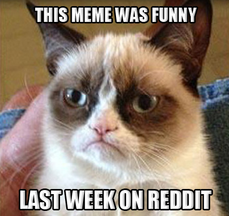 Grumpy Cat MEME ON REDDIT