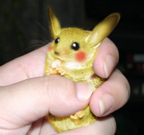 025 real life like pokemon Pikachu
