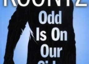 Odd Is on Our Side cover