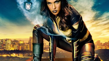 Megalyn Echikunwoke as Vixen