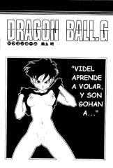 Dragon Ball G Videl y Son Gohan