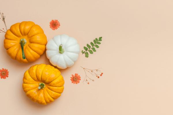 Alimentos da estação: Outono