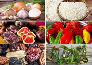 comida peruana ingredientes