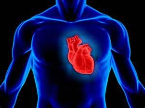 foto del corazon