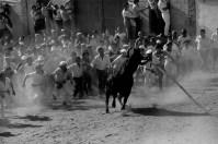 SPAIN. Benavente. 1980. The bull.