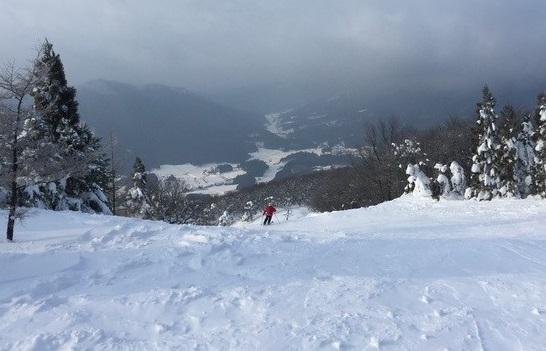 花見山スキー場