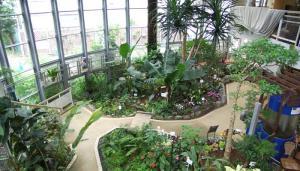 ふれあい植物センター