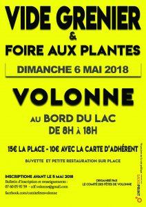Vide Grenier & Foire aux Plantes 2018