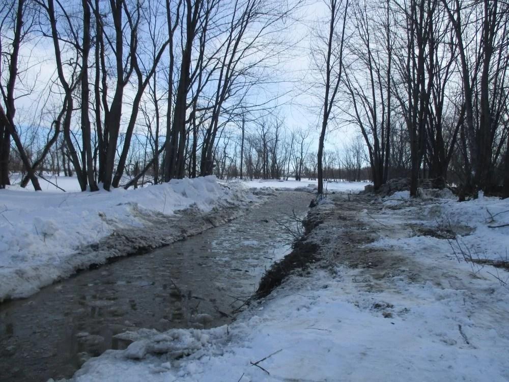 33 marais reconnectés au lac Saint-Pierre