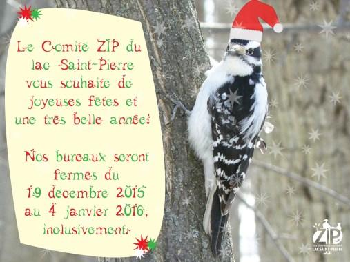 Noël 2015-FB