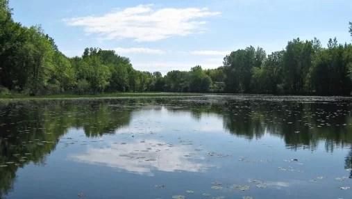 Le marais Saint-Eugène dans le secteur de Pointe-du-Lac